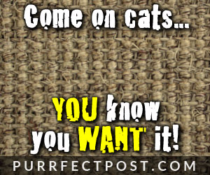 You know you want it cats!  Sisal fabric!